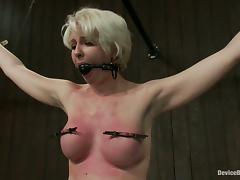 Short-Haired Blonde Devon Taylor Nipple Tortured in Bondage Vid