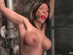 Bondage, BDSM, Bondage, Brunette, Femdom, Mature